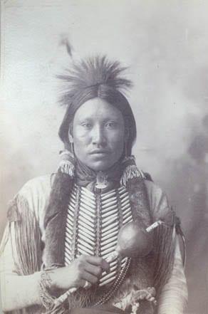 Explore Your Ancestry II